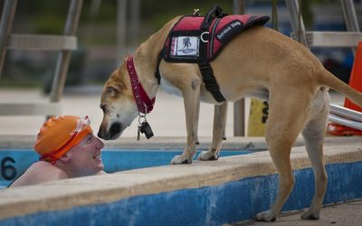 Therapy Dogs Help Wounded Warriors